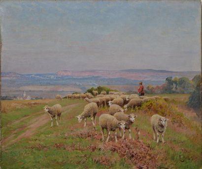 Edouard PAIL