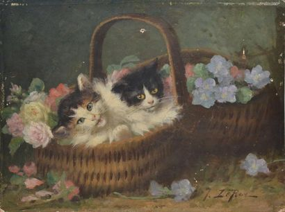 Jules Gustave