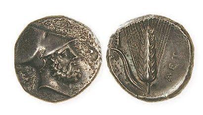LUCANIE, Métaponte (350 - 330) Statère à...