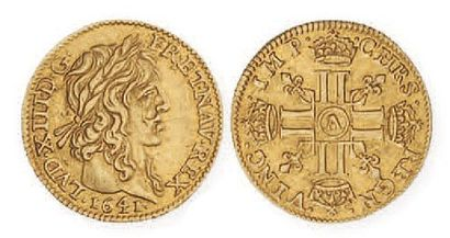 IDEM. Demi louis d'or de Warin, 1641 Paris....
