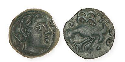 GAULE, Senones. Bronze (Giamelos) à l'oiseau. LT7565. TTB à superbe, belle patine...