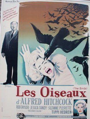LES OISEAUX, 1963 Réal. A. Hitchcock (GRINSSON)...