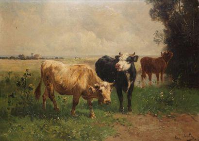 SCHANTEY HENRI, 1857-1927
