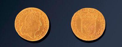 LOUIS XVI (1774-1793)  Double Louis d'Or...