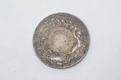 Médaille en bronze argenté Patria d'après Rives.  Avers : Marianne casquée et cuirassée,...