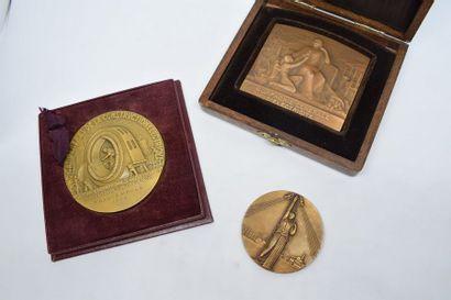 Lot de médailles en bronze comprenant :  -...