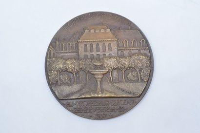 Médaille en bronze.  Avers : EMILE SERGENT. Profil gauche du docteur.  Signature...