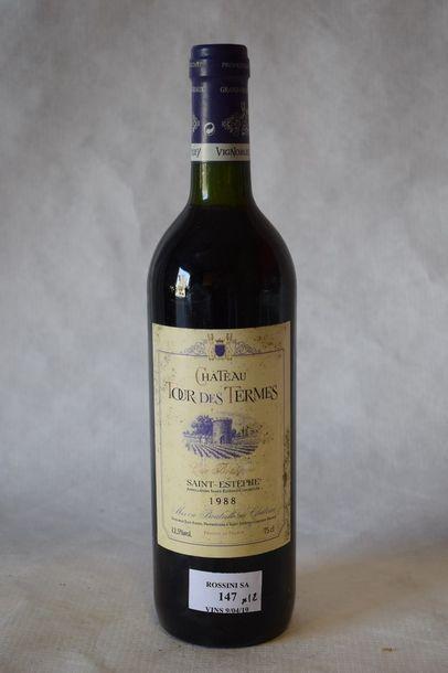 12 bouteilles CH. TOUR DES TERMES, Saint-Estèphe...