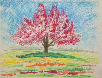 NAKACHE Armand, 1894-1976  Arbre en fleur...