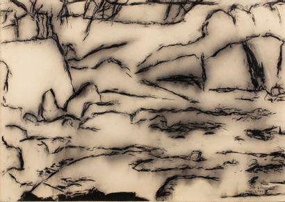 DOURNON Jean-Jacques, né en 1953  Sans titre, I.95  fusain et estompe sur papier...