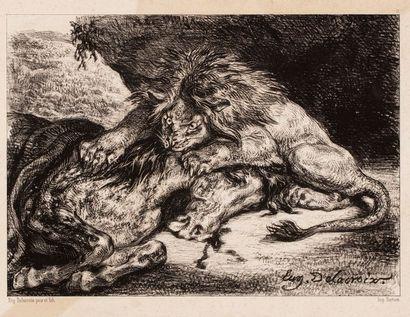 DELACROIX Eugène, d'après  Lion dévorant...