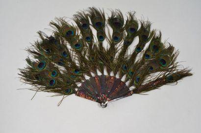 Eventail en ocelles de plumes de paon.  Monture...
