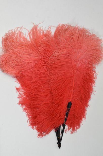 Eventail en plumes d'autruches teintées rouge....