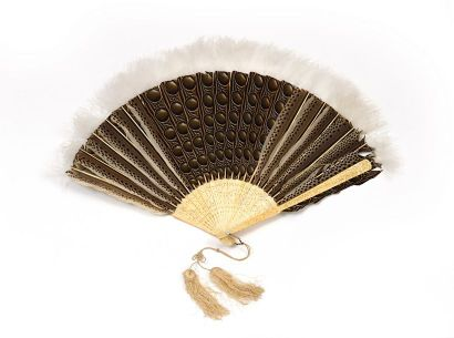 Eventail en plumes de faisan argus bordé...
