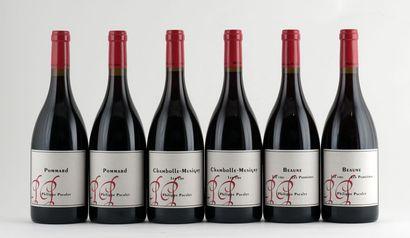 Sélection de Vins par Philippe Pacalet - 6 bouteilles