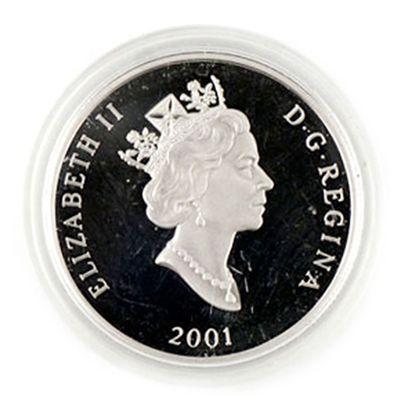 Une monnaie 0,9995 Platine du Canada Canards...