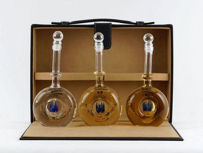 Tequila Espranto Seleccion  Niveau A  3 bouteilles...