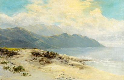 SHERRIN, Daniel (1868-1940)