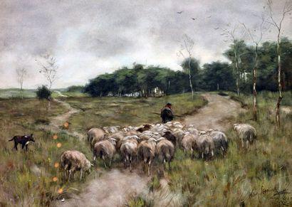 STEELINK, Willem II (1856-1928) Pastorale...