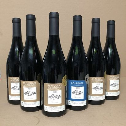 6 bottles: 1 NICOLAS DE BOURGEUIL 2015