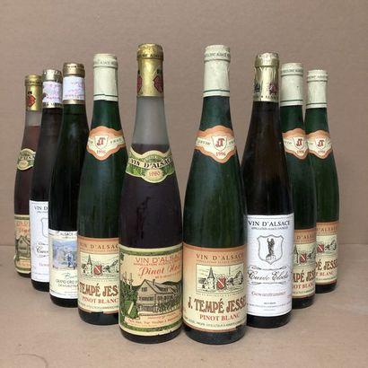 9 bottles: 2 ALSACE 1980 Pierre Adam, 4 ALSACE 1996 Tempe Jessel, 2 ALSACE 2000...