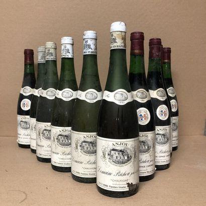 10 bottles: 1 ANJOU 1993 Domaine de Pierre...