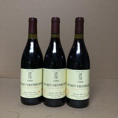 3 bouteilles GEVREY-CHAMBERTIN 1989 (étiquettes...