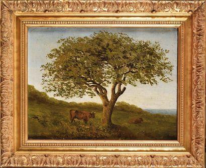 Marcelin DE GROISEILLIEZ (1837-1880) Paysage...