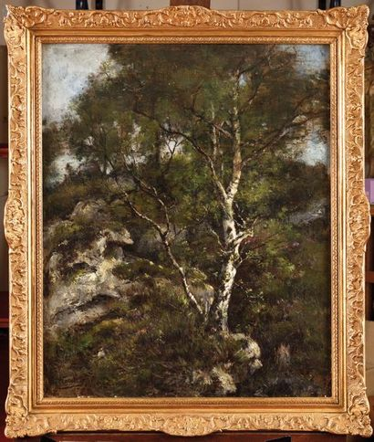 Louis Victor WATELIN (1838-1907) Rocher en...