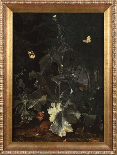 Attribué à Otto Marseus Van SCHRIECK (1619...