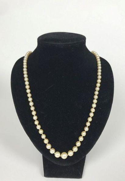 COLLIER de perles de culture, le fermoir en or jaune serti de diamants de taille...