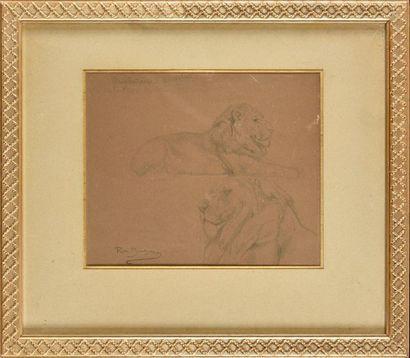Rosa BONHEUR (1822-1899) Etude de lions Crayon...