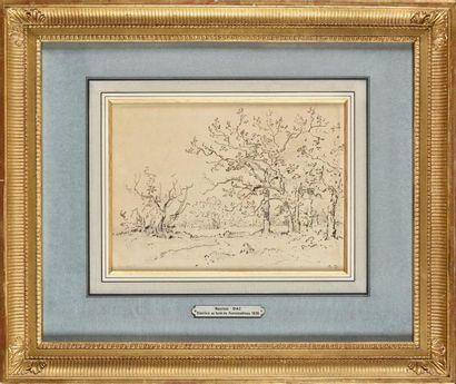 Narcisse DIAZ DE LA PENA (1807-1876) Clairière...