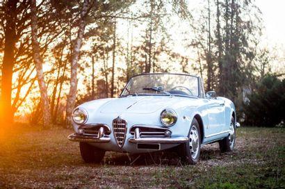1961 Alfa Roméo Giulietta Spider