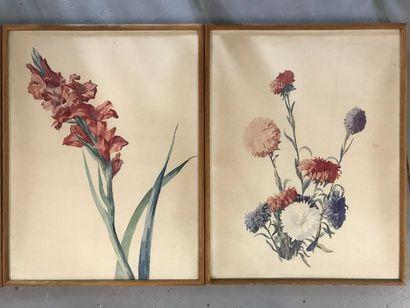 Suite de quatre aquarelles de fleurs sur...