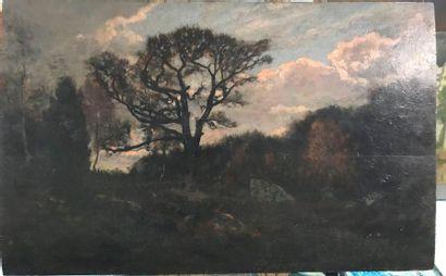 Rocher en forêt de Fontainebleau  Huile sur...