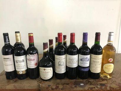 Ensemble de 12 bouteilles de vins dont Lalande...