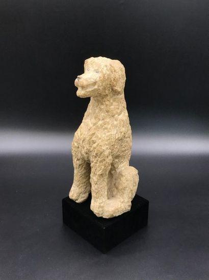Sculpture en pierre représentant un chien assis.  Signé Karly sur le dos  Haut....