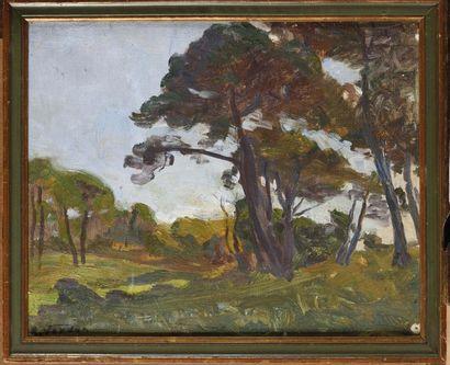 Raymond VERDUN (1873-1954)  Pins parasols Huile...