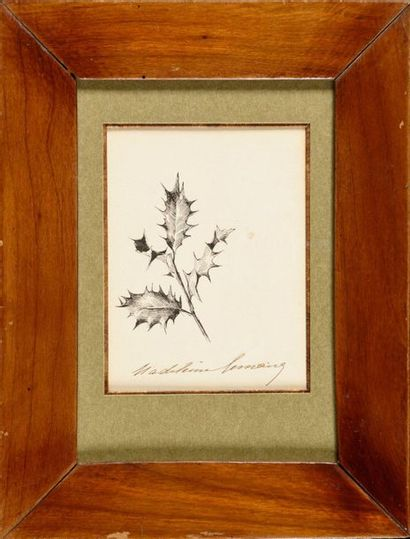 MADELEINE LEMAIRE (1845-1928)   Feuilles...