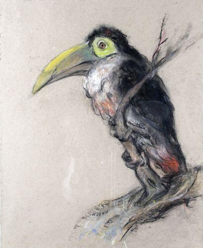 RADKA KOEVA-EHLINGER (1937-) Le Toucan Pastel...