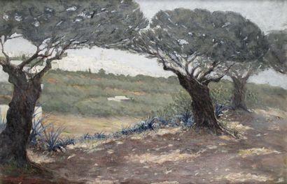 MONIQUE MARCHAND (1947-) Vue de Sidi Bou...