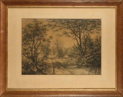 Auguste ALLONGÉ (1833-1898) Chemin en fôret...