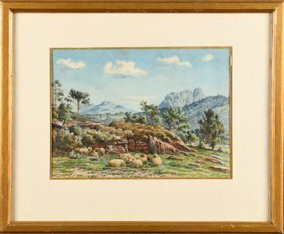William Baptiste BAIRD (1847-1917) Moutons...
