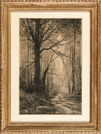 Auguste ALLONGE (1833-1898) Forêt Fusain...