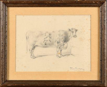 Rosa BONHEUR (1822-1899) Etude de vache Dessin...
