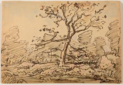 Théodore ROUSSEAU (1812-1867) Arbres en forêt...
