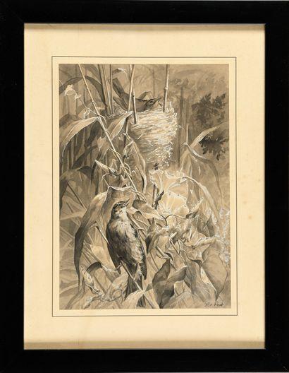 Xavier DE PORET (1894-1975) Oiseaux au nid...
