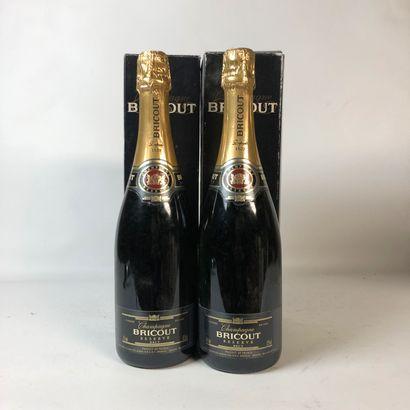 2 bouteilles CHAMPAGNE BRICOUT Réserve Brut...