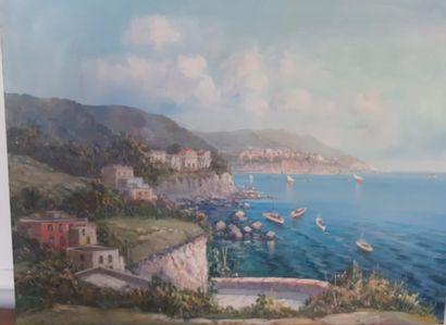 SIANE  Villas sur les hauteurs de Monaco...